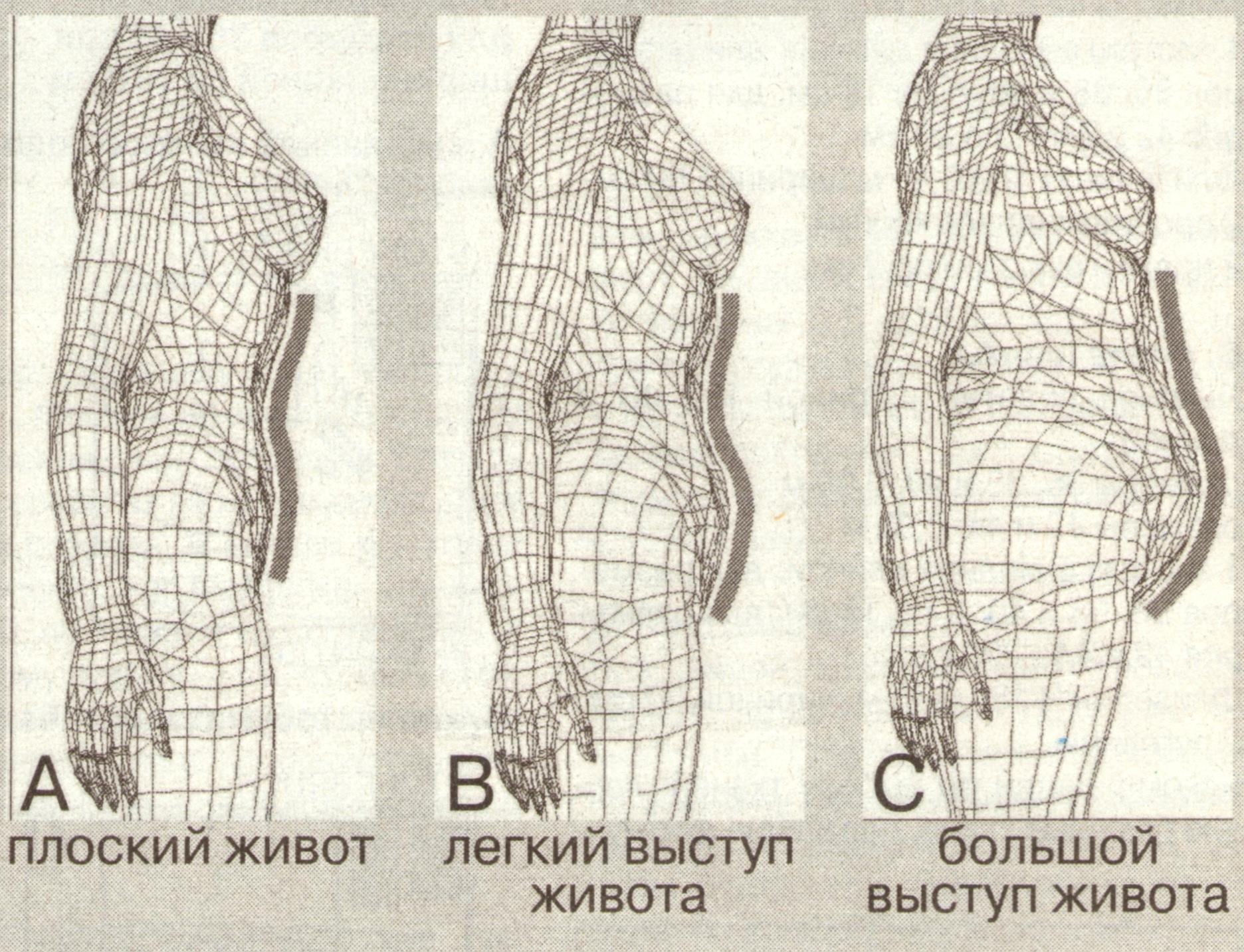 Форма живота