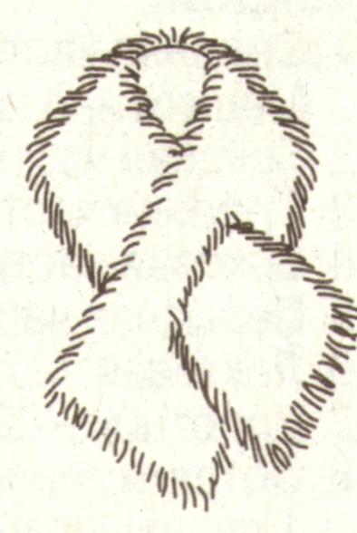 Меховая горжетка эскиз